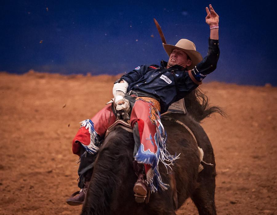 Ride 'em Cowboy!