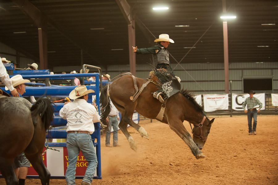 Bronco Rider