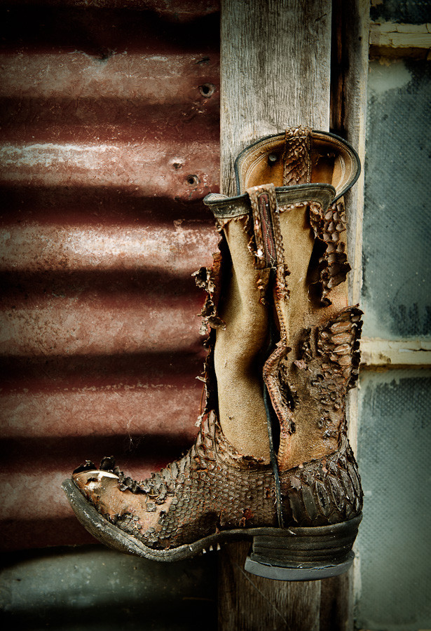 Cowboy Boot Johnson City Tx Dave Wilson Photography