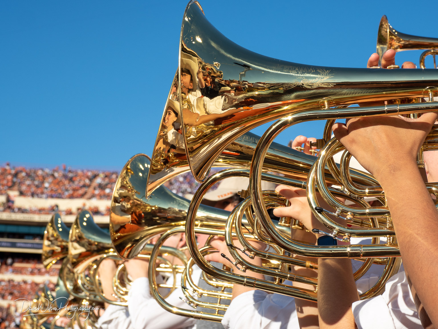 A Line Of Baritones Dave Wilson Photography